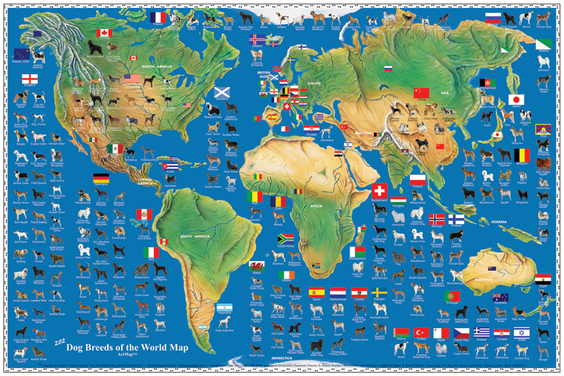 Dog Breeds of the World Map